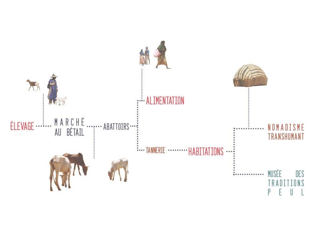 diplome-burkina-faso-dori-au-carrefour-des-transhumances-transfrontalieres-au-sud-du-sahel-la-cour-partagee-26