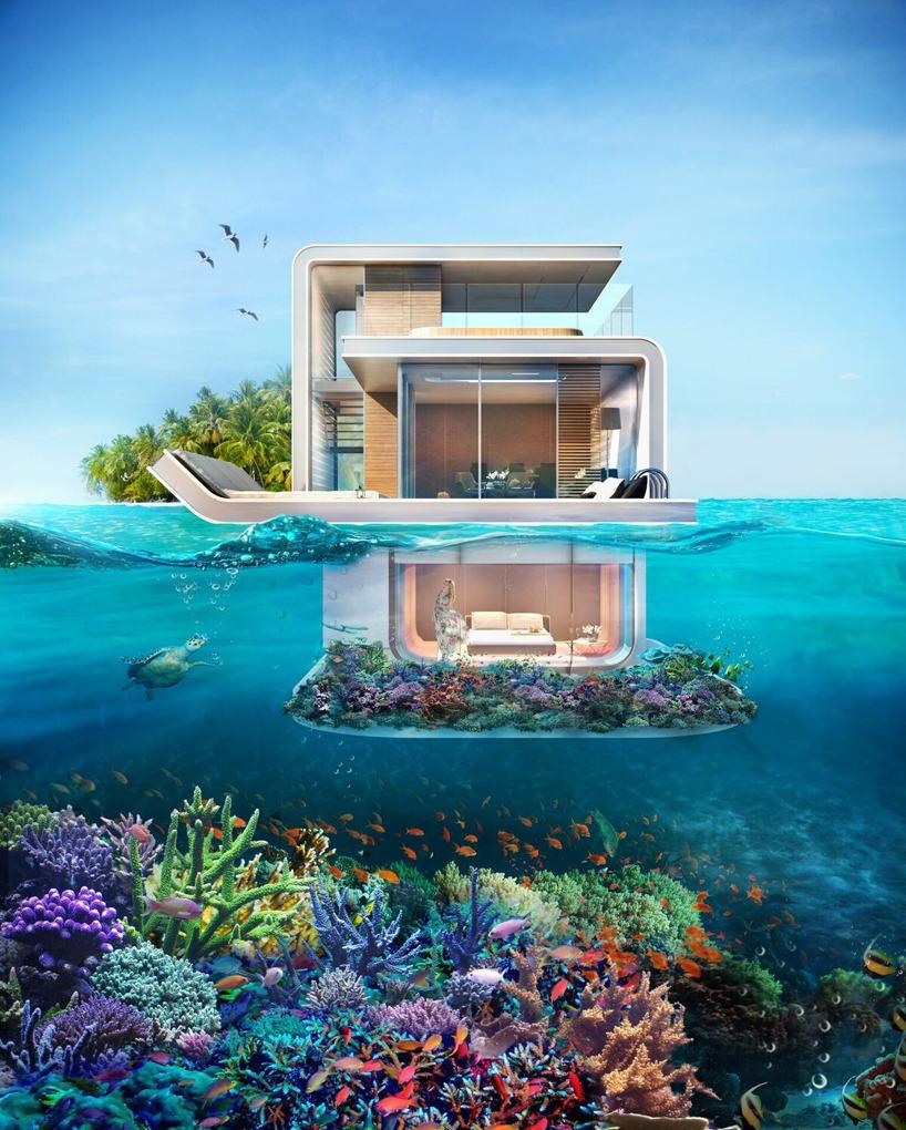 floating-seahorses-des-triplex-flottants-pour-observer-les-hippocampes-5